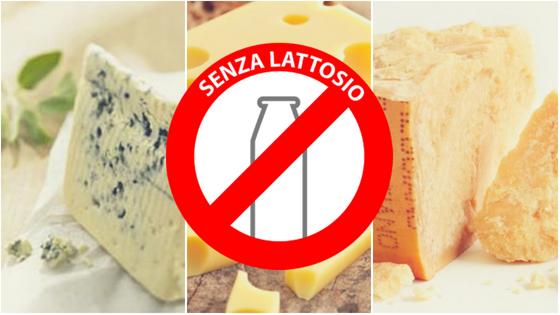 Intollerante al lattosio? Non rinunciare al formaggio!